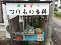 nagahashi8.jpg