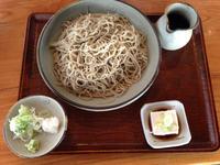 sasakura4.jpg