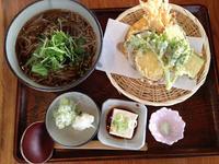 sasakura5.jpg