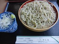 yajima5.jpg
